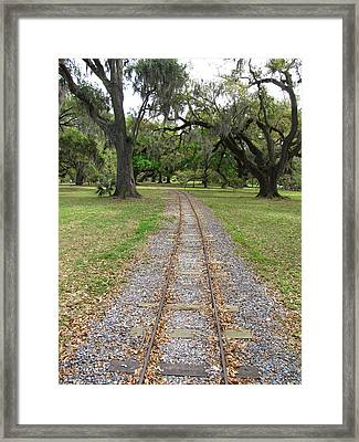 Framed Print featuring the photograph On The Right Track by Beth Vincent