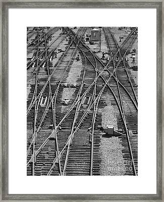 On The Right Track? Framed Print