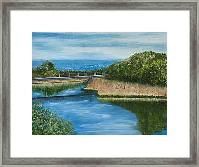 On The Rio Grande Framed Print by Gina Cordova