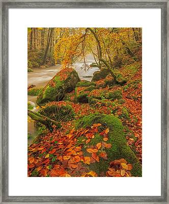 On The Riverside Framed Print