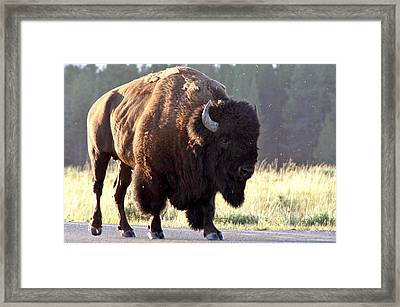 On The Road Again Framed Print by Doug Hubbard