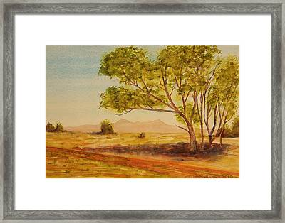 On The Road To Broken Hill Nsw Australia Framed Print by Tim Mullaney