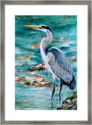On The Rocks Great Blue Heron Framed Print