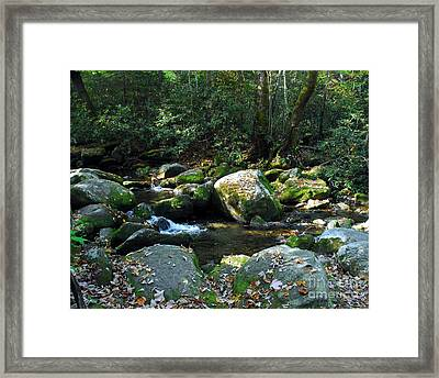 On The Rocks Framed Print by Mel Steinhauer