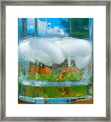 On The Rocks Framed Print by Pamela Clements