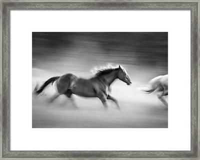 On The Run Framed Print by Dianne Arrigoni