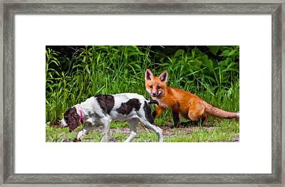 On The Scent Impasto Framed Print by Steve Harrington
