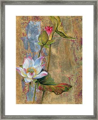 On The Silver Ray Framed Print