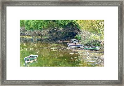 On The Suir Framed Print by Debra Collins