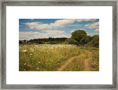 On The Summer Meadow II. Russia Framed Print by Jenny Rainbow