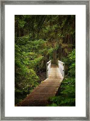 On The Trail Framed Print
