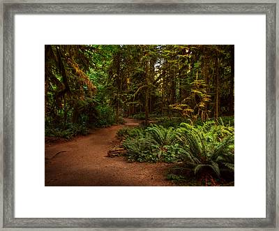 On The Trail To .... Framed Print by Randy Hall