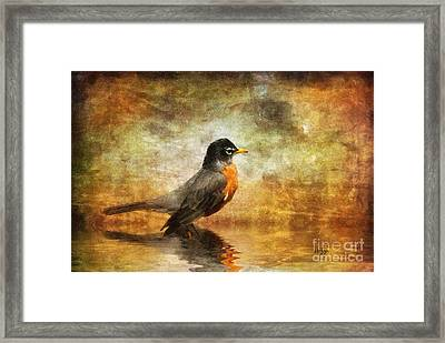 On The Watch For Worms Framed Print by Lois Bryan