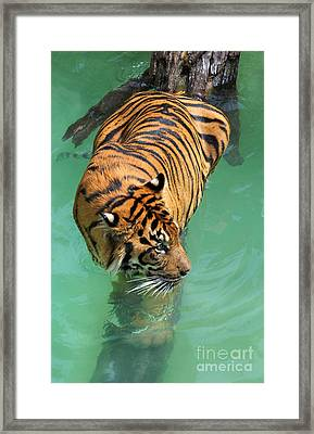 On The Water Framed Print by Dan Holm
