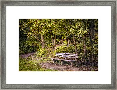 On The Way Home Framed Print