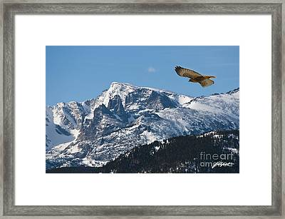 On The Wing Framed Print