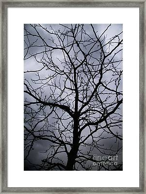 Framed Print featuring the photograph On Their Shoulders Held The Sky by Linda Shafer