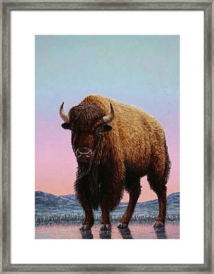 On Thin Ice Framed Print by James W Johnson