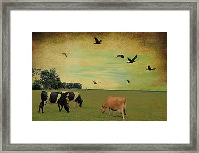 On This Green Earth Framed Print by Jan Amiss Photography