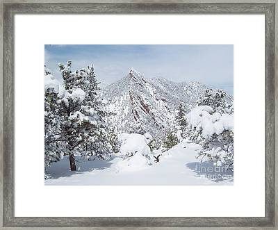 On Top Of Bear Peak Snow Mountain  Framed Print