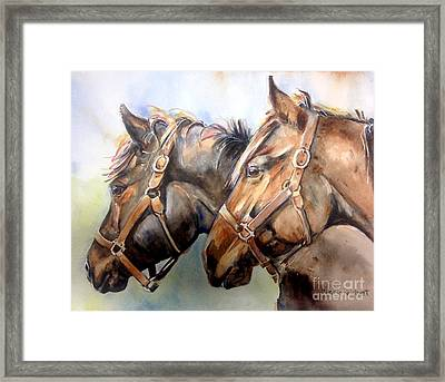 Horse In Watercolor On Watch Framed Print by Maria's Watercolor