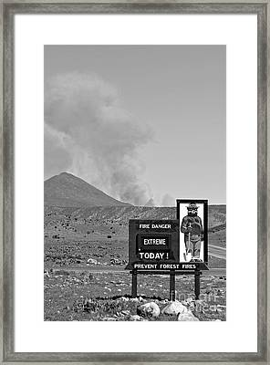 Only You Can Prevent Forest Fires  Framed Print by Juls Adams