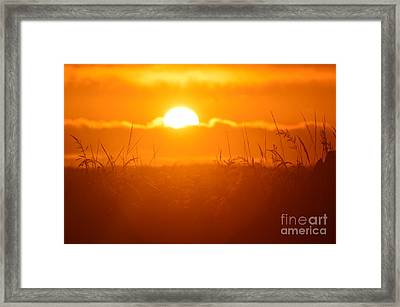 Ona Beach Sate Park Framed Print by Sheldon Blackwell