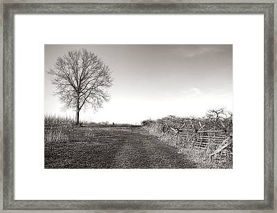 Once A Battlefield Framed Print by Olivier Le Queinec