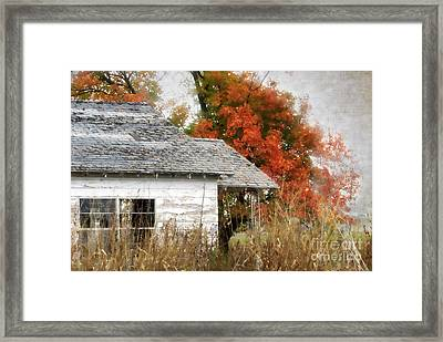 Once I Laughed Framed Print by Betty LaRue