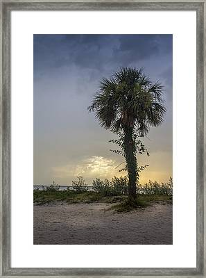 Once Upon A Rainy Day Framed Print by Marvin Spates