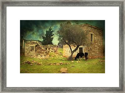 Once Upon A Time In Phokaia  Framed Print by Taylan Apukovska