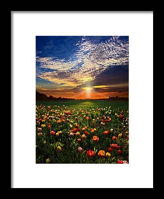 National Geographic Framed Prints