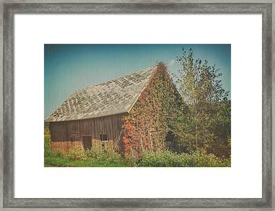 Once Was Framed Print