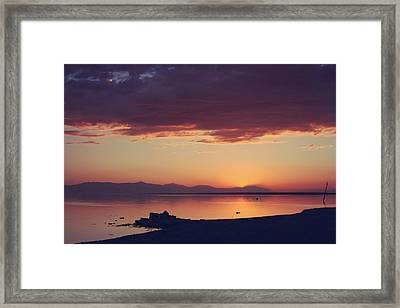 Once You Have Found It Never Let It Go Framed Print by Laurie Search