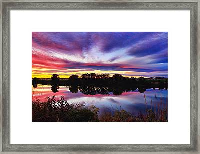 One Autumn Evening Framed Print by Lynn Hopwood