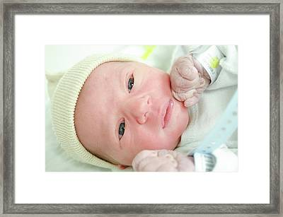 One Day Old Baby Boy Framed Print by Photostock-israel