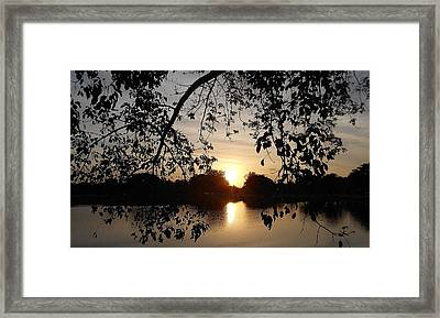 One Day Framed Print by Sheila Silverstein
