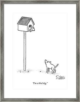 One Dog Is In A Bird House While Another Looks Framed Print