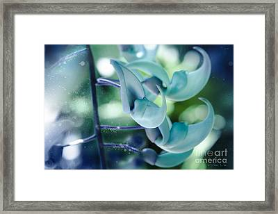 One Dream Framed Print