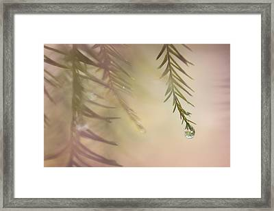 One Drop Framed Print by Maria Robinson