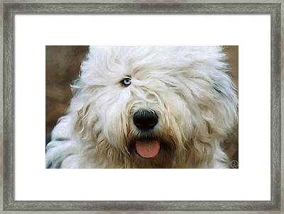 One Eye Is Enough Framed Print by Gun Legler