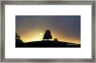One Foggy Morning Framed Print by Tim Gainey