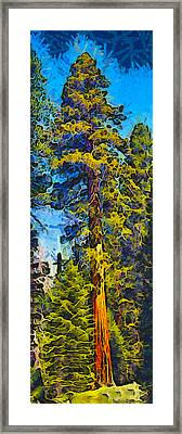 One Giant Abstract Sequoia Framed Print by Barbara Snyder