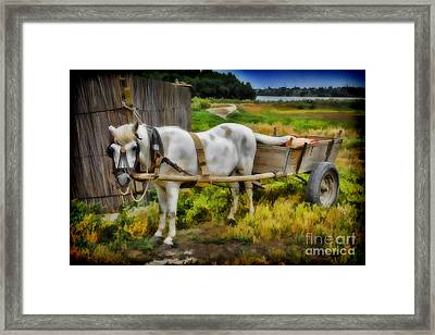 One Horse Wagon Framed Print