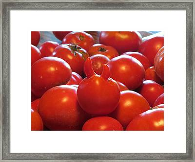 One In Every Crowd Framed Print by Diane Mitchell