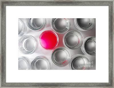 One Jar Containing Pink Liquid Framed Print by Sami Sarkis