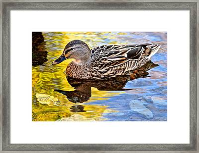 One Leaf Two Ducks Framed Print by Frozen in Time Fine Art Photography