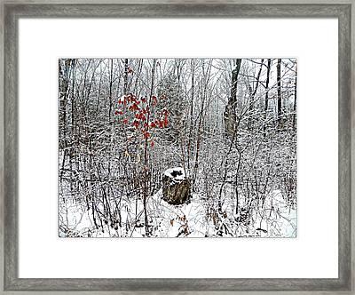 One Lone Log Framed Print by Dianne  Lacourciere