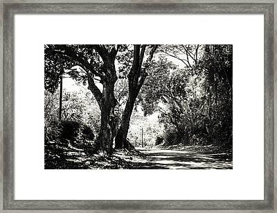 One Lovely Day Framed Print by Jenny Rainbow