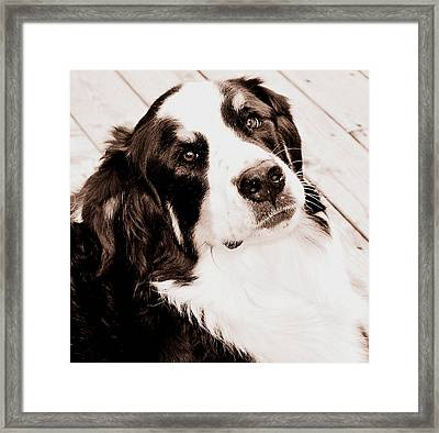 One More Day Framed Print